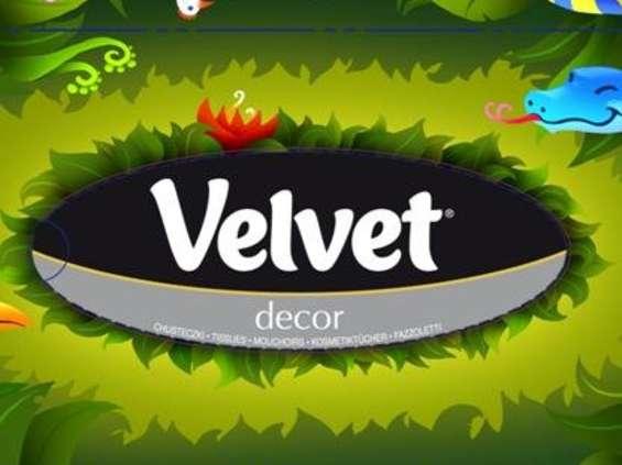 Ambitne plany Velvet po rozwodzie z Kimberly-Clark