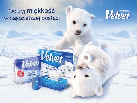 Velvet bez Kimberly-Clark, ale za to z misiem