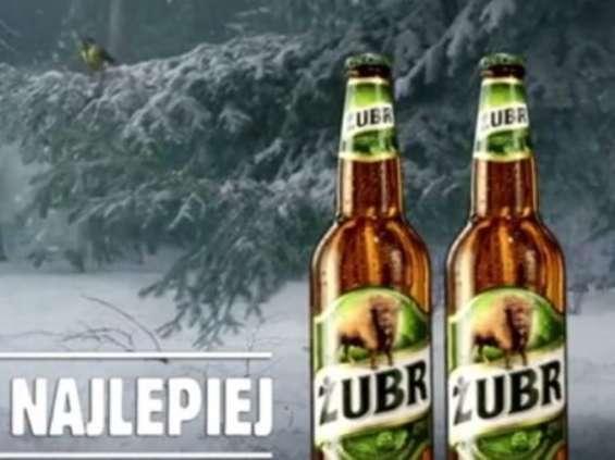 PZL i para Żubrów [wideo]