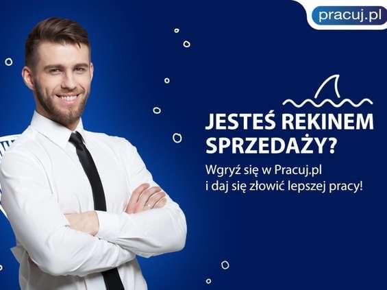 """Pracuj.pl szuka """"Rekinów sprzedaży"""""""