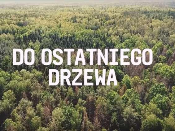 """Kolejna odsłona kampanii """"Ostatnie Drzewo"""" z udziałem Borysa Szyca"""