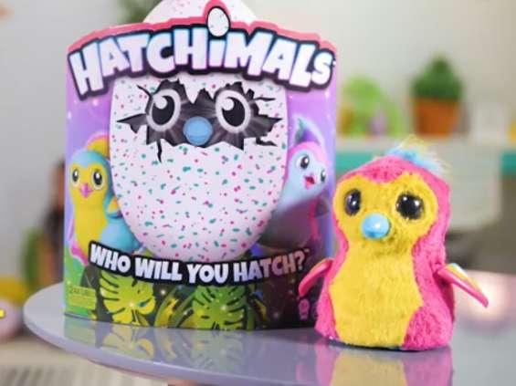 TalentMedia wprowadza na polski rynek markę Hatchimals
