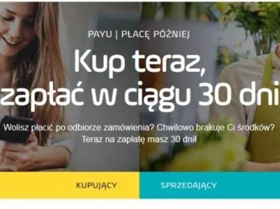 GoldenSubmarine i Bidlab promują nową usługę PayU