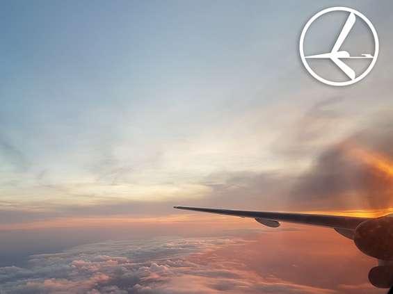 W ciągu dwóch lat LOT zwiększył liczbę pasażerów o ponad 50 proc.