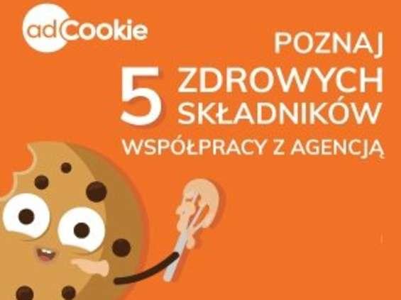 5 zdrowych składników współpracy marketera z agencją