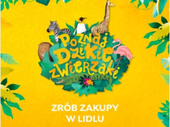 Dzikie zwierzaki - nowa akcja lojalnościowa w Lidlu