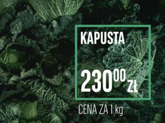BNP Paribas z kampanią o klimacie [wideo]