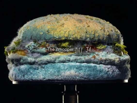 Spleśniały Whopper w spocie Burger Kinga [wideo]