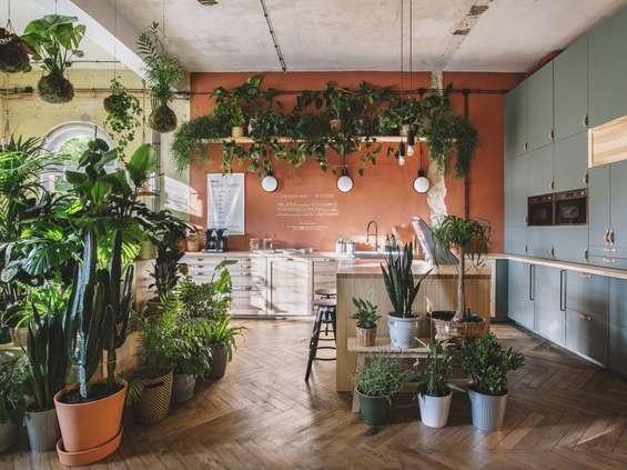 W Szczecinie powstał IKEA Dom Jutra