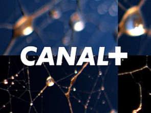 Odwołana sprzedaż akcji Canal+