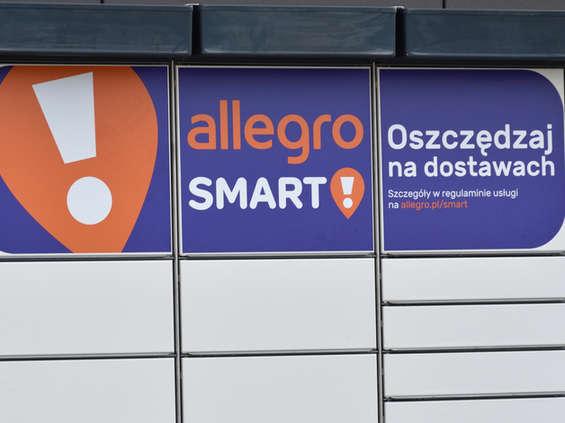Allegro urosło w ub.r. o połowę