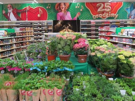 Auchan świętuje 25 lat obecności w Polsce