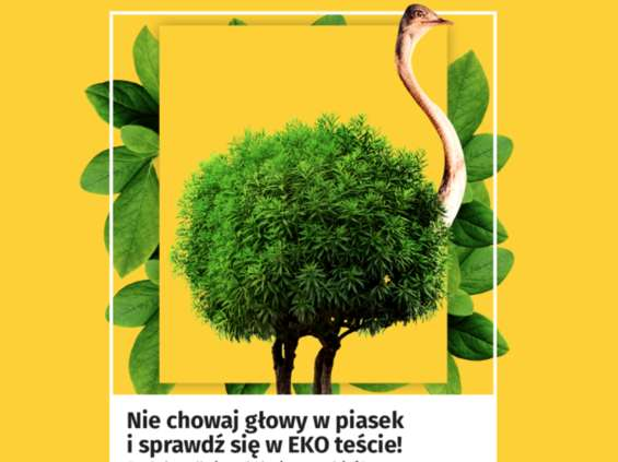 Onet rusza z Narodowym Testem Ekologicznym Polaków