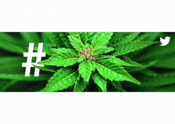 Twitter: Cannabis